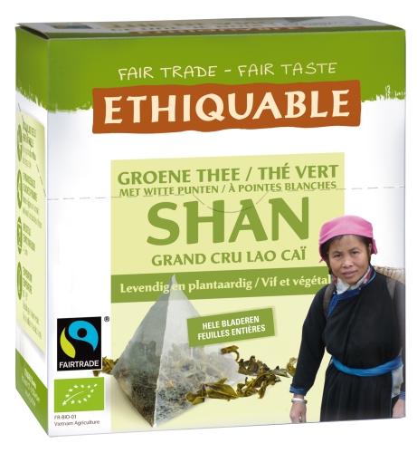 Bio Thé Vert Shan Pyramide 30g