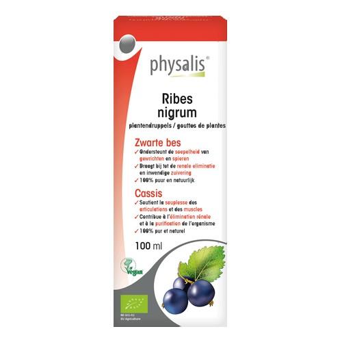 Physalis Gouttes Ribes N. Bio100ml