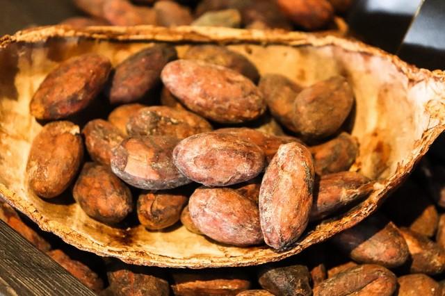 Terra roxa sàrl : Chocolats