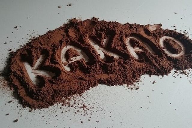 Terra roxa sàrl : Cacao en poudre