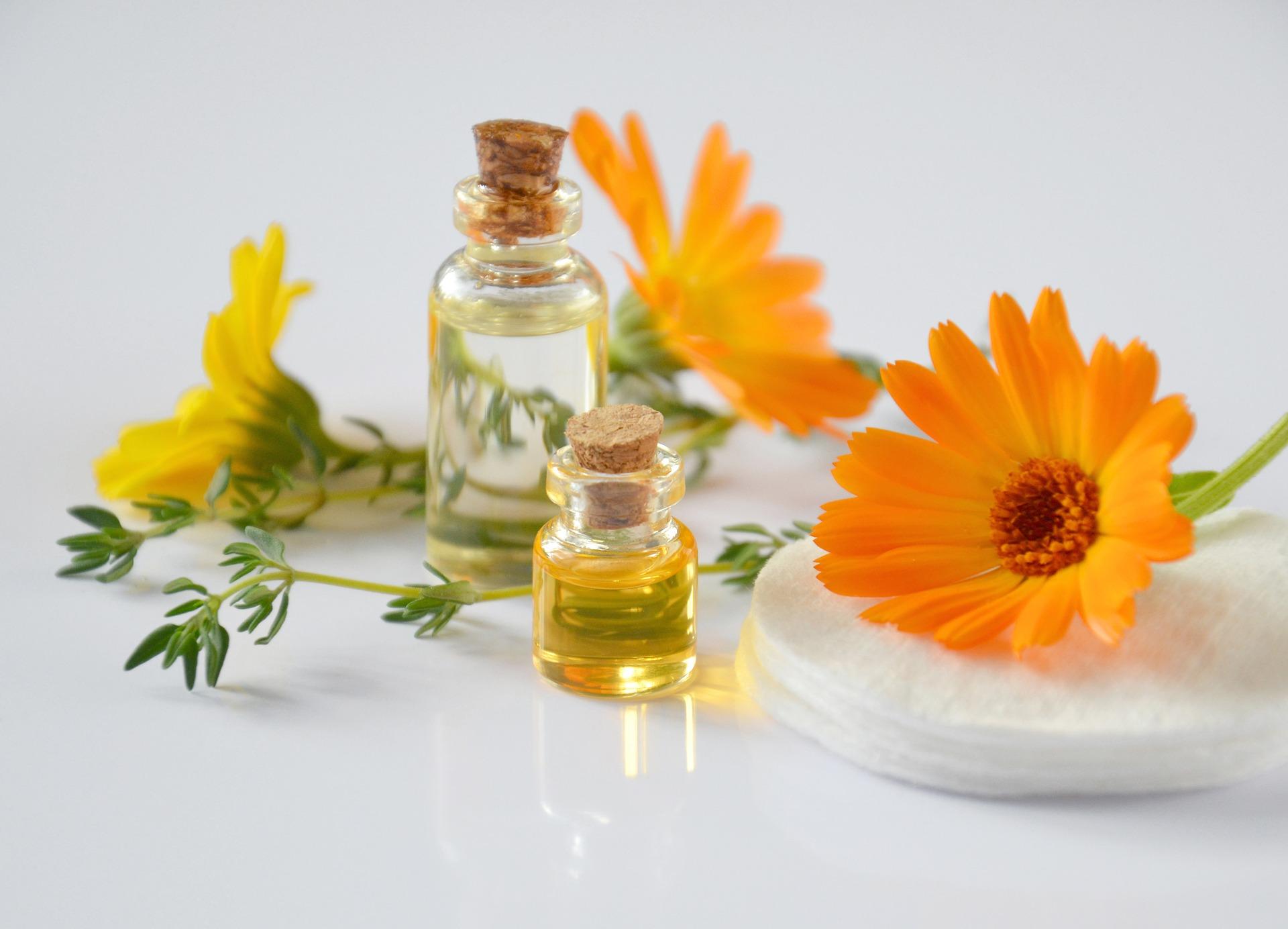 Terra roxa sàrl : Physalis huiles essentielles bio